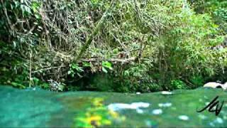 White River Tubing in Jamaica - Chukka Caribbean Adventures