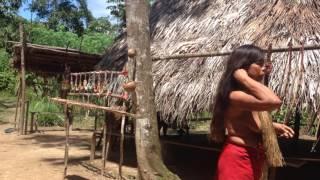 Перу.Город Икитос.Амазонка.Приток Река  Нанай.Эколодж.2017 24