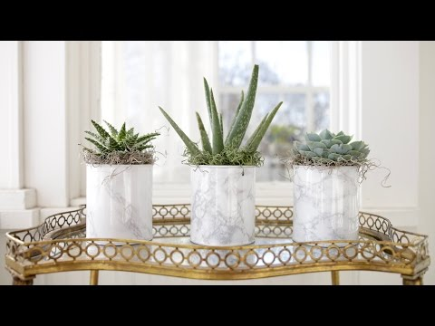 DIY Paint Can Planter/Vase // Garden Answer