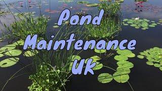 Pond Maintenance UK - What type of pond maintenance?
