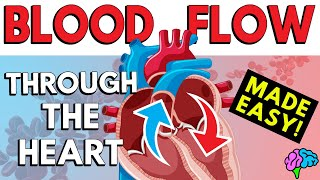 Blood Flow Through the Heart (Made Easy in 5 Minutes!)
