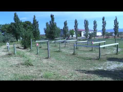 Campeonato Navarro de Enganches 240618 Video 1