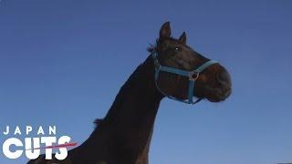 Trailer of The Horses of Fukushima (2013)