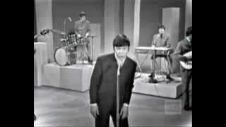 The Animals - Don´t Let Me Be Misunderstood