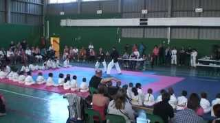 preview picture of video 'Karate Shukokaï  Club Limeil Brevannes et Viry Chatillon'