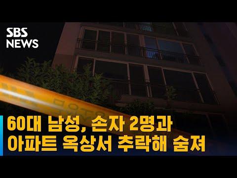 [유튜브] 60대 남성, 손자 2명과 아파트 옥상서 추락해 숨져