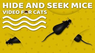 CAT GAMES MOUSE - Hide and Seek Mice! Video for Cats to Watch.