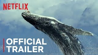 Our Planet Trailer