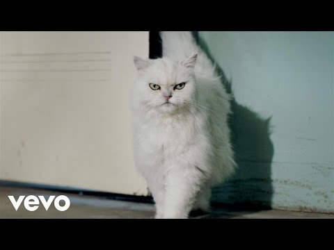 Katy Perry - Roar: From A Meow To A Roar (Single Preview)