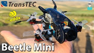 "Transtec Beetle MINI 2"" DJI HD Cinewhoop - Setup, Review & Flight Footage"