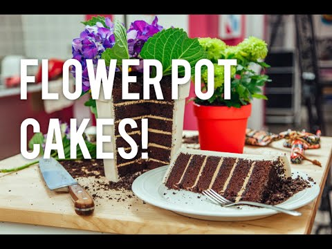 How to Make A FLOWER POT out of CAKE! Chocolate cake