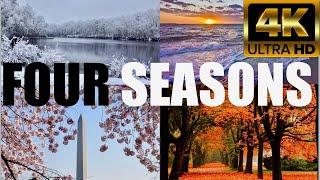 Four seasons in North America | Snowfall, fall autumn, spring, summer | meditation flute peace music