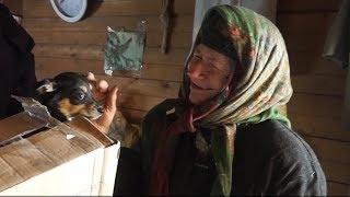 К отшельнице на вертолёте: Агафье Лыковой доставили продукты и подарили щенка