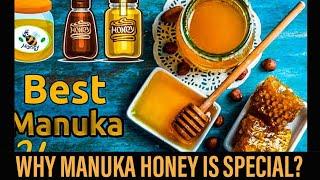 Manuka Honey Benefits and how to eat it