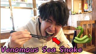 I Ate VENOMOUS SEA SNAKE In Japan