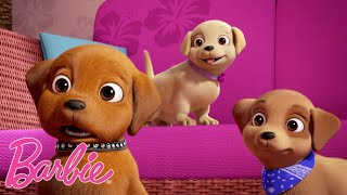 Barbie Polska ????Wszystkie najsłodsze zwierzęta ????????Kompilacja filmów Barbie