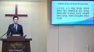"""요한복음 강해(40) """"영생하도록 있는 양식(?)과 하나님의 일(?)"""" (1)"""