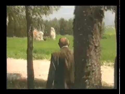 יהודה שטרנפלד