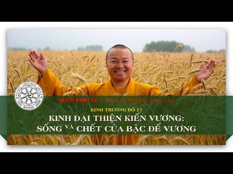 Trường bộ Kinh 17 – Kinh Đại Thiện Kiến vương – Sống và chết của bậc đế vương (19/06/2014) - Thích Nhật Từ