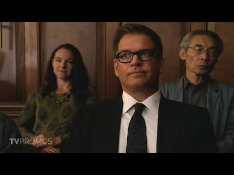 Bull 3.02 (Preview)