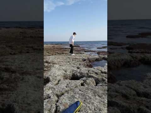 La pesca nella regione di Samara su video di Volga