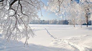 winter day 312133231322231231211312322311