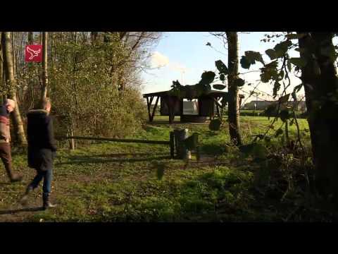 Project 'nieuwe natuur' aan de oostkant van Dronten dichtbij realisatie