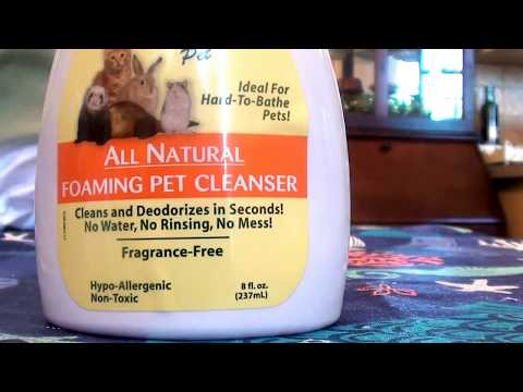 Citrus Magic All Natural Foaming Pet Cleanser Fragrance-Free REVIEW
