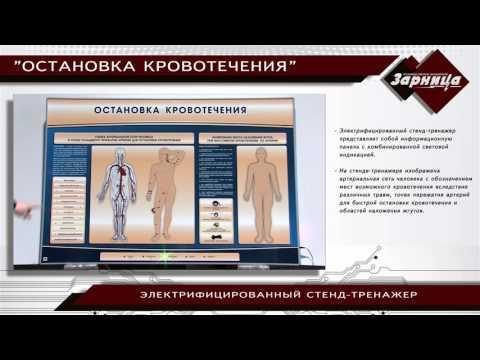 """Электрифицированный стенд-тренажер """"Остановка кровотечения"""""""