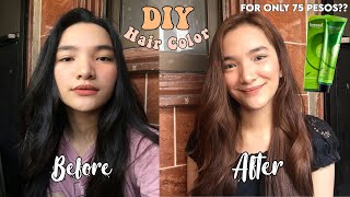 DIY HAIR COLOR AT HOME USING BREMOD (NO BLEACH) | DENAYS ANN