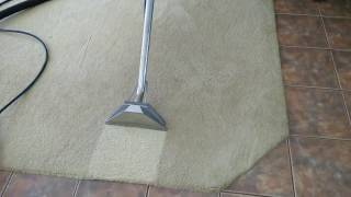 Professional Carpet Cleaning In Reading.