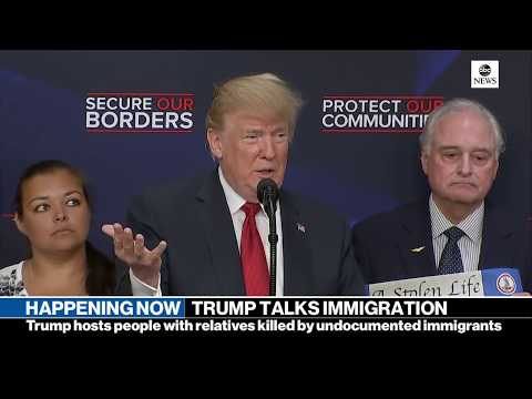 Pres. Donald Trump gives remarks on immigration with 'Angel Families'    ABC News