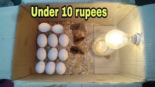 Incubator for chicken eggs at home | how to make egg incubator without temperature controler