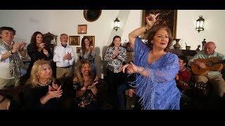 MARIA DE LA COLINA - TÁPAME (Videoclip Oficial)
