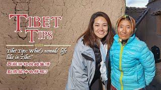 Tibet Tips: What's nomads' life like in Tibet?