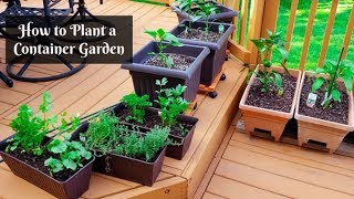 How To Plant A Container Garden | Small Gardening On Your Backyard Deck Or Patio