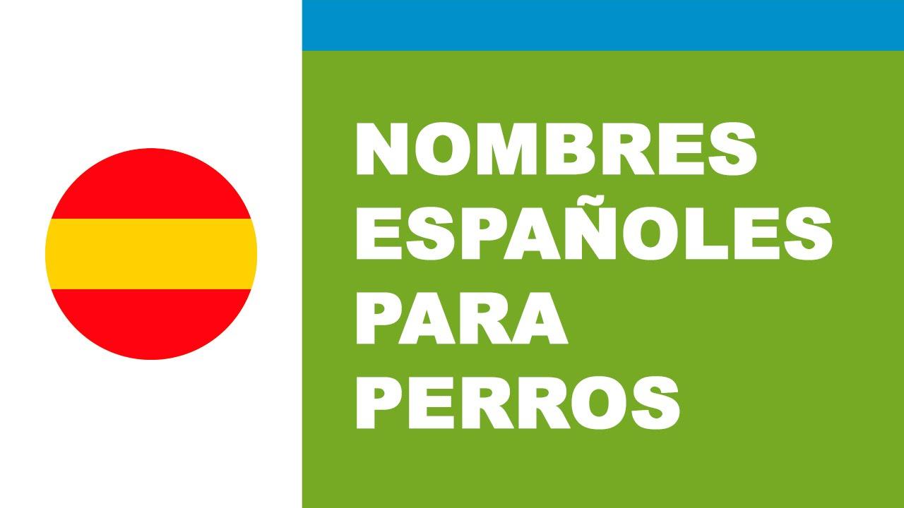 Nombres españoles para perros