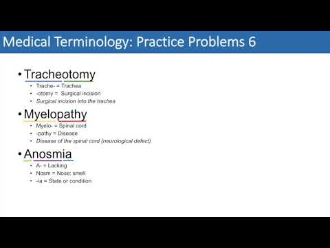 Medical Terminology | The Basics and Anatomy | Practice Problems ...