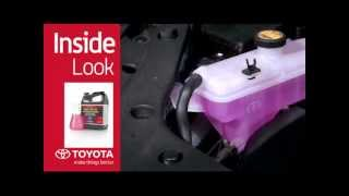 Toyota Pointe Claire >> Spinelli Toyota Pointe Claire Download Free Tomp3 Pro