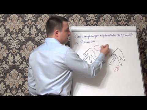 Дифференциальная диагностика вирусных гепатитов и механических желтух
