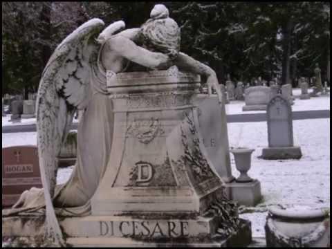 Música Angels Go To Heaven