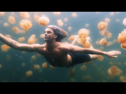 Sam Feldt & The Him ft. GoldFord - Use Your Love (Starring Jay Alvarrez)