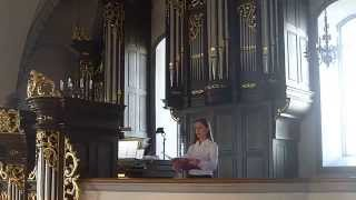 preview picture of video 'Ave Maria - Schubert - Sopran Solo mit Orgel - Basilika Rankweil'