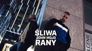 Kadr z teledysku Rany tekst piosenki Śliwa ft. John Mojo