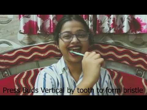 Ayurvedic Herbal Toothbrush