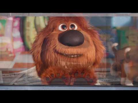 The Secret Life of Pets (2016) Meet Duke (Universal Pictures)