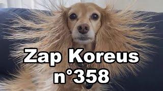 Zap Koreus n°358