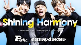 P*Light & Massive New Krew - Shining Harmony [TANO*C TOUR 2019 ANTHEM]