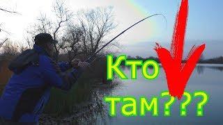 Рыбалка на живца. My fishing