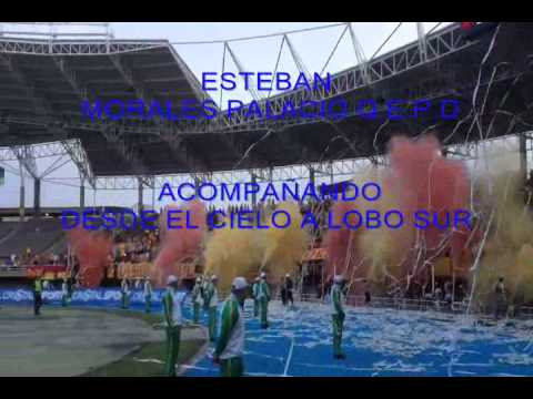 """ESTEBAN LOBO SUR"" Barra: Lobo Sur • Club: Pereira"